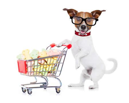 mujer con perro: jack russell perro empujando un carrito de la compra lleno de deliciosos bocadillos y galletas, aislados en fondo blanco Foto de archivo