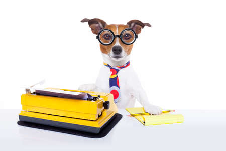 jack russell secretary dog typing on a typewriter keyboard  a note pad and pencil beside, isolated on white background photo