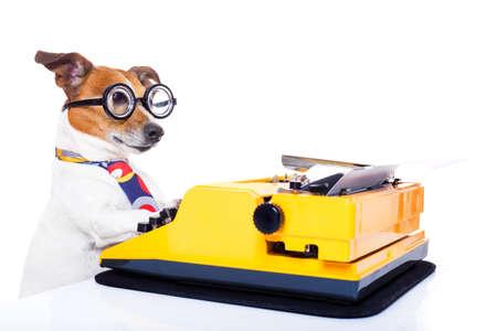 ジャック ラッセル秘書犬白い背景に分離されたタイプライターのキーボードで入力します。