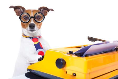 jack russell secretaresse hond te typen op een schrijfmachine toetsenbord, geïsoleerd op een witte achtergrond