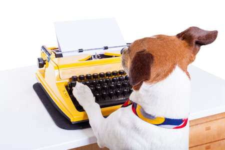 to the secretary: jack russell secretary dog typing on a typewriter keyboard ,isolated on white background