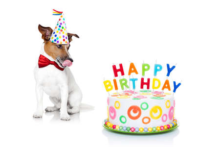 pastel de cumplea�os: perro jack russell con lamer la lengua y con hambre de una torta de cumplea�os feliz con velas, vestido con corbata roja y sombrero de partido, aislado en fondo blanco Foto de archivo