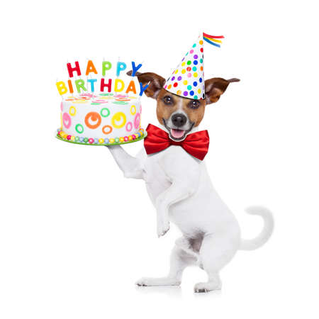 funny glasses: jack russell dog holding a happy birthday cake with candels , red tie and party hat on , isolated on white background