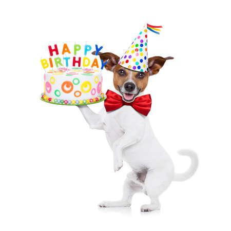 pasteles de cumpleaños: jack russell perro sosteniendo un pastel de cumpleaños feliz con velas, corbata roja y sombrero de fiesta en, aislado en fondo blanco