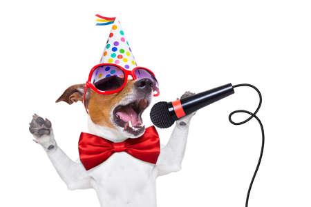 jack russell perro como una sorpresa, cantando canción de cumpleaños como karaoke con el micrófono que llevaba corbata roja y sombrero de partido, aislado en fondo blanco Foto de archivo