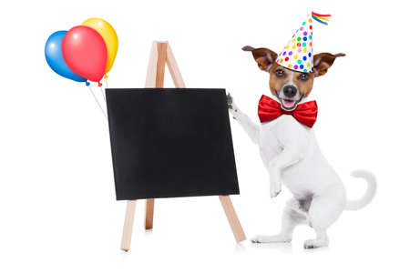 red tie: jack russell dog holding a empty blank blackboard or placard,, red tie and party hat on , isolated on white background