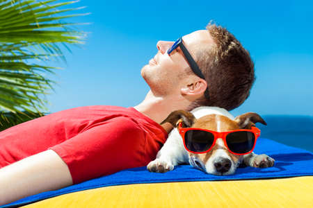 siesta: jack russell dog  and owner sunbathing a having a siesta under a palm tree , on summer vacation holidays at the beach