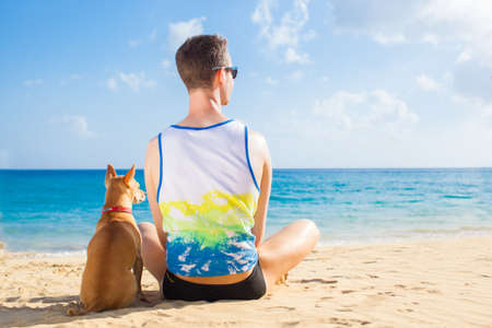 dogs sitting: dog and owner sitting close together at the beach on summer vacation holidays, watching sunset or sunrise Stock Photo