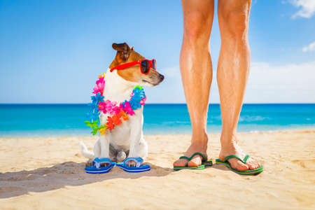 vacation: dog and owner sitting close together at the beach on summer vacation holidays, close to the ocean shore, while looking to the side
