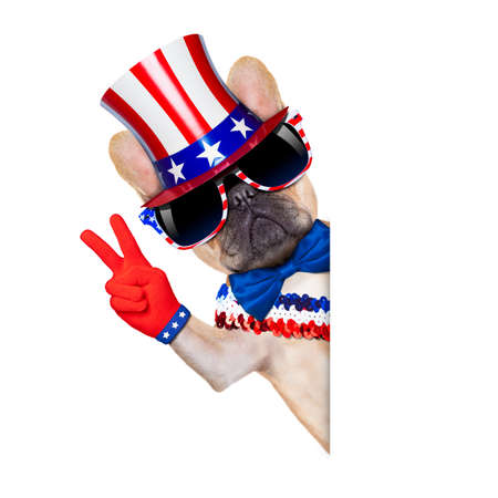 free vote: french bulldog with peace or victory fingers on independence day on 4th  of july