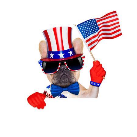 independencia: bulldog francés agitando una bandera de EE.UU. el día de la independencia el 4 de julio
