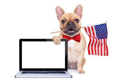 julio: perro bulldog francés agitando una bandera de EE.UU. el día de la independencia el 4 de julio