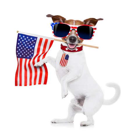 ジャック ラッセル犬アメリカのサングラスを身に着けている白い背景で隔離の口で 7 月 4 日の独立記念日にアメリカの国旗を保持