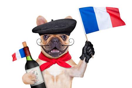 bouledogue français avec du vin rouge et béret chapeau