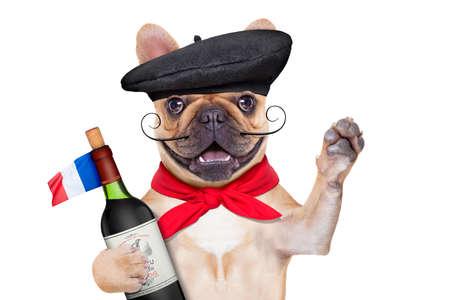 perros graciosos: bulldog francés con el vino rojo y sombrero de la boina Foto de archivo