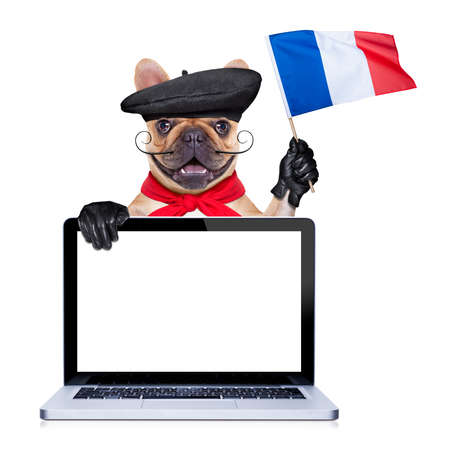 french bulldog with  beret hat photo