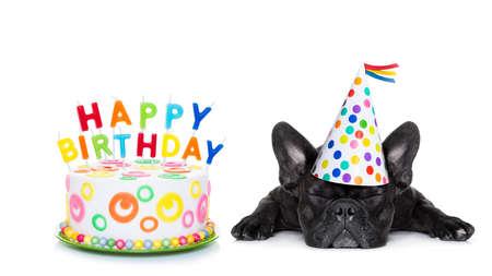 joyeux anniversaire: bouledogue français avec un gâteau d'anniversaire heureux et des bougies, un chapeau de fête, les yeux fermés, isolé sur fond blanc