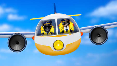 departing: pilot and copilot dogs in cockpit cabin flying , landing or departing  for a summer vacation holiday  with funny airplane