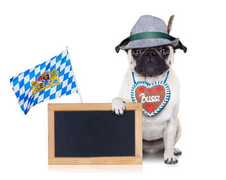 alcohol cardboard: pug dog dressed up as bavarian with gingerbread as collar Stock Photo