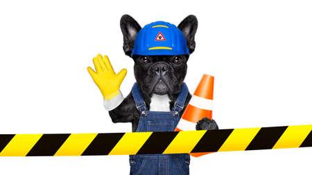 herramientas de construccion: perro trabajador con casco detr�s de la cinta de advertencia, trabajo en progreso, y dejar de gesto, aislado sobre fondo blanco