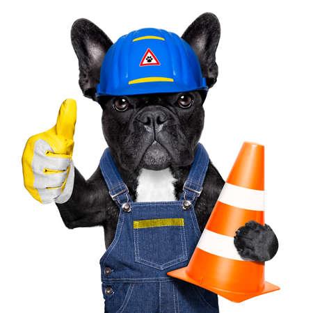 Arbeiter Hund mit Helm mit Daumen nach oben, work in progress, Verkehrskegel in Arm, isoliert auf weißem Hintergrund