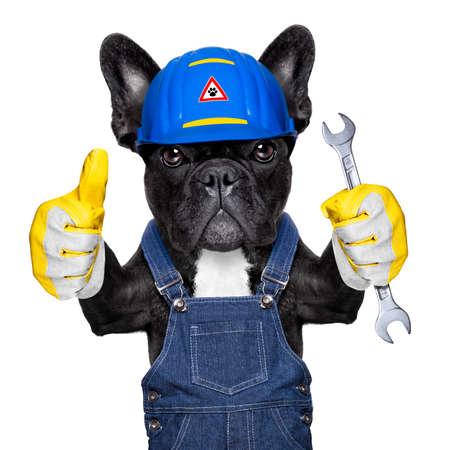 buldog: trabajador perro manitas con el casco y la llave en la mano, listo para reparar, arreglar todo en casa, aislado en fondo blanco Foto de archivo