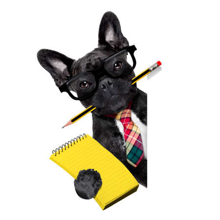 Bürokaufmann Französisch Bulldog Hund mit Kugelschreiber oder Bleistift im Mund mit Notizblock hinter leer leere Banner oder Schild, isoliert auf weißem Hintergrund