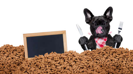 hungry  french bulldog dog behind a big mound or cluster of food with empty blank blackboard  , isolated on white background