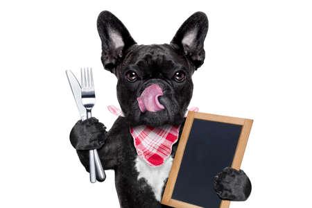 배고픈 프랑스 불독 저녁 식사 또는 점심 식사, 빈 칠판이나 플래 카드를 들고 먹을 준비 개, 혀 튀어 나와, 흰색 배경에 고립