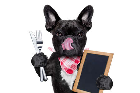 hungry french bulldog dog  ready to eat dinner or lunch , holding a blank blackboard or placard, tongue sticking out , isolated on white background Reklamní fotografie - 44520851
