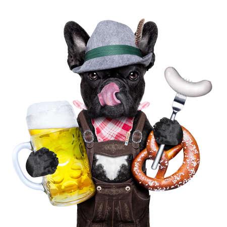 bulldog: perro fresco bávaro alemán francés bulldog con jarra de cerveza y salchichas y pan pretzel, aislados en fondo blanco