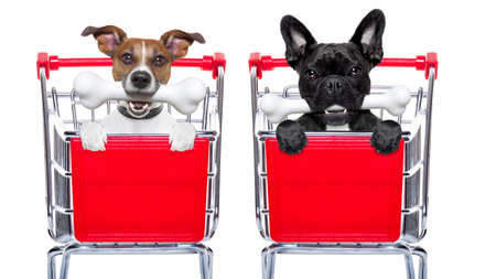 empty shopping cart: couple of two  dogs together  inside a shopping cart trolley , behind  a blank  empty banner or placard, with a bone in mouth , isolated on white background