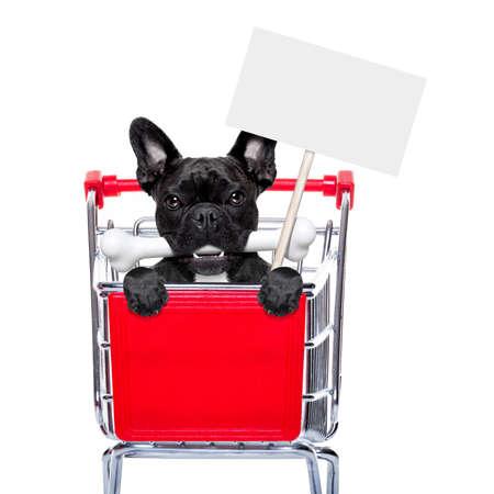 perrito: perro bulldog francés dentro de un carrito de la compra carro, detrás de una pancarta vacío en blanco sosteniendo un cartel, con un hueso en la boca, aislado en fondo blanco Foto de archivo
