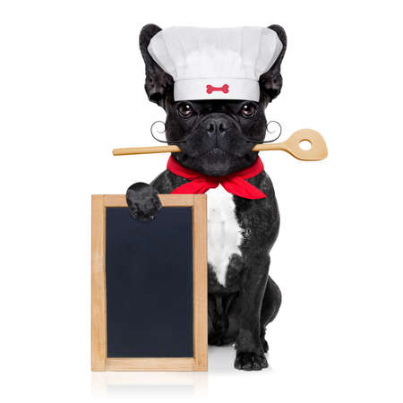 french bulldog dog chef cook holding a blank empty blackboard or placard, isolated on white background