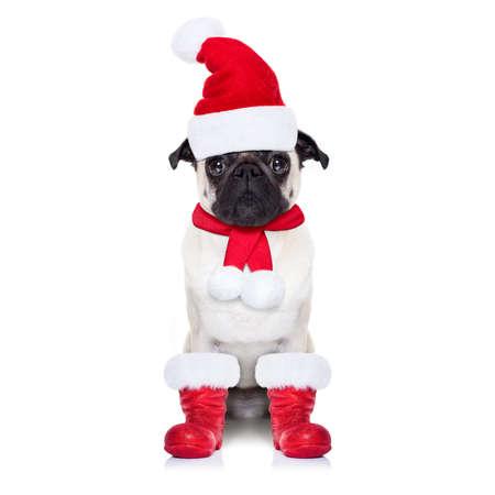 weihnachtsmann lustig: Mops Hund als Weihnachtsmann mit roten Stiefeln, f�r Weihnachtsferien, suchen dumm, isoliert auf wei�em Hintergrund
