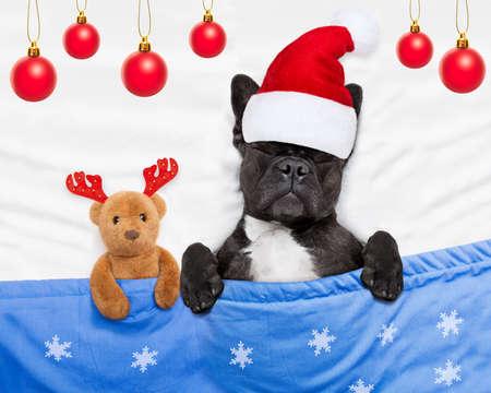 french bulldog santa claus dog sleeping off christmas holidays with teddy bear Stock Photo
