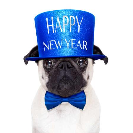 Mops Hund Toasten für Silvester mit frohes neues Jahr-Hut, isoliert auf weißem Hintergrund