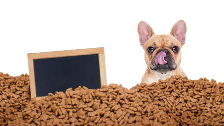 big behind: hungry bulldog dog behind a big mound or cluster of food with empty blank blackboard  , isolated on white background Stock Photo