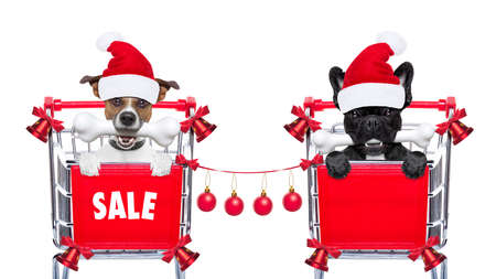 sale shop: santa claus couple of dogs in a shopping cart at christmas holidays, behind placard or banner , isolated on white background