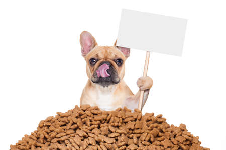 hungry: hungry bulldog dog behind a big mound or cluster of food with empty blank blackboard  , isolated on white background Stock Photo