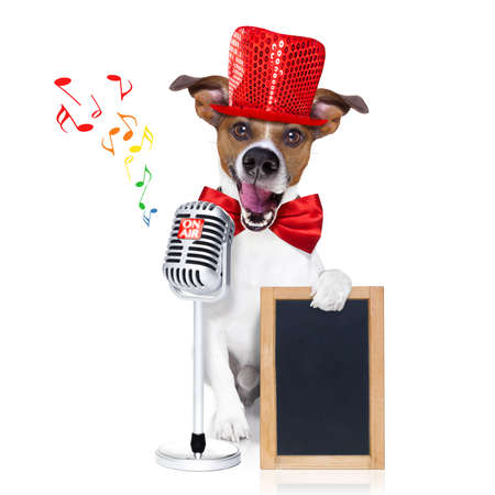 newsreader: jack russell dog , singing a karaoke song or reading the news using a retro mic or microphone,behind blank empty blackboard or placard, isolated on white background