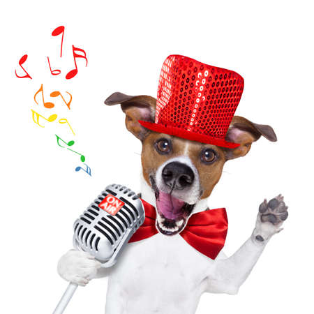 newsreader: jack russell dog , singing a karaoke song or reading the news using a retro mic or microphone, party hat and red tie, isolated on white background