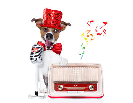newsreader: jack russell dog , singing a karaoke song or reading the news using a retro mic or microphone, behind retro radio recorder,  isolated on white background Stock Photo