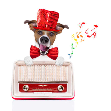 newsreader: jack russell dog , listening to music, behind a retro radio recorder,  party hat and red tie, isolated on white background