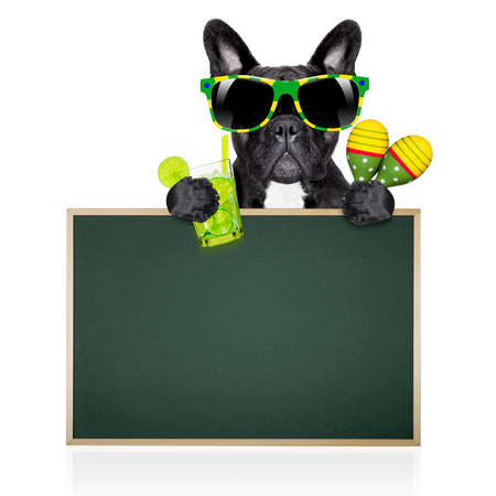 brazil  caipirinha cocktail french bulldog dog enjoying summer vacation holidays, behind  blank empty blackboard or placard, isolated on white background