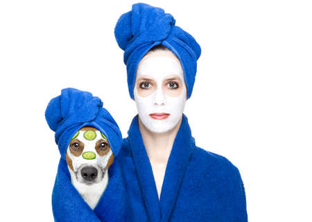 pet therapy: young woman or girl  with beauty facial cream mask on face  with jack russell dog with wellness treatment, isolated on white background