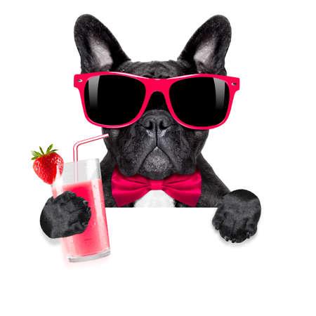 Französisch Bulldog Hund mit Cocktail-Milchshake Smoothie und lustige Brille hinter leeren Plakat oder Banner, isoliert auf weißem Hintergrund