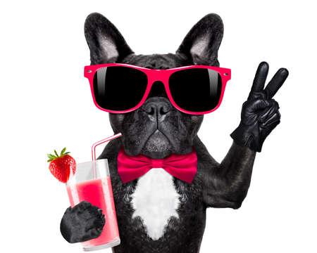 Französisch Bulldog Hund mit Cocktail-Milchshake Smoothie und lustige Brille mit Frieden Sieg Finger, isoliert auf weißem Hintergrund