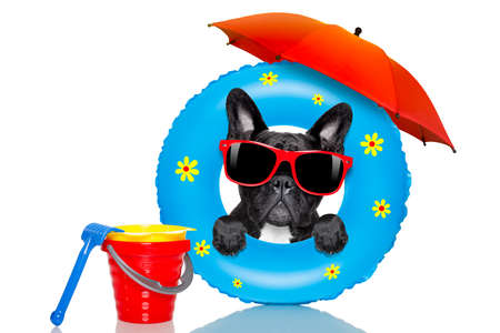 mattress: french bulldog dog relaxing on air mattress, with sunglasses  on summer vacation holidays at the beach and umbrella isolated on white background