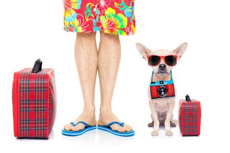 chihuahua hond en eigenaar klaar om te gaan op zomervakantie vakantie met bagage en tassen, op een witte achtergrond Stockfoto